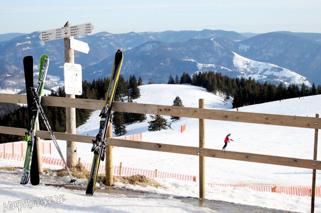 Schwarzwald 2011