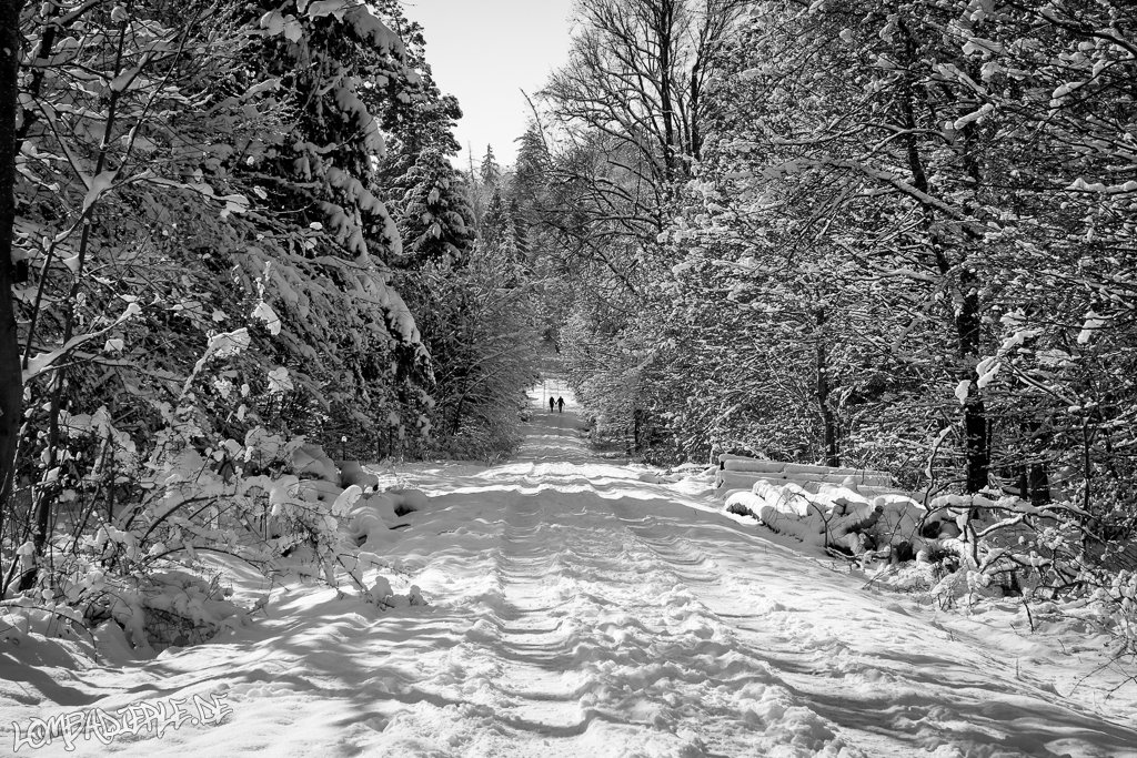 Ein traumhafter Wintertag im Februar 2013…